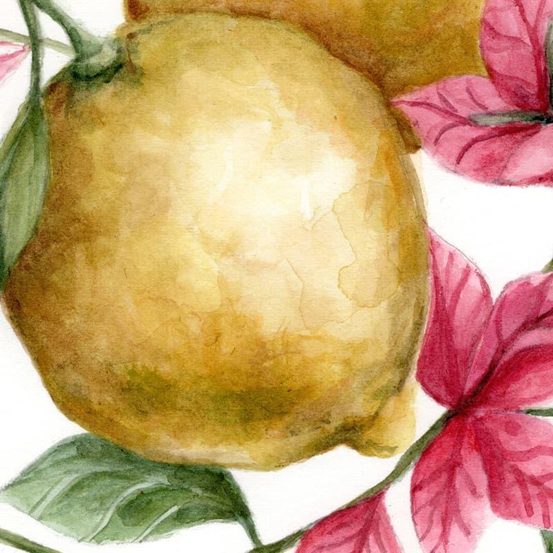Acquerello originale con Limoni e Bouganvillea