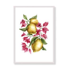 Lemons and bouganvillea è una stampa artistica per decorare le pareti di casa o del tuo ufficio. E' una stampa in acquerello realizzata in Italia