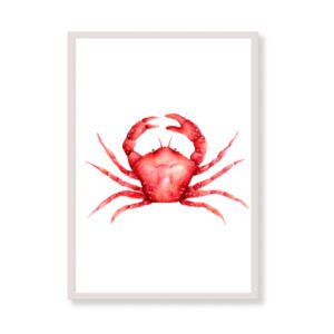 Art Print - Red Coral