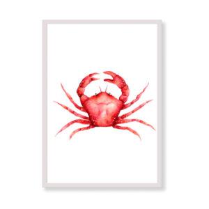 Stampa artistica - Granchio Rosso