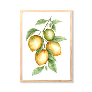 Art Print – Amalfi Coast Lemons